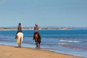 equitation cours sur le Bassin d'Arcachon